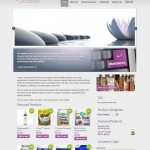 Website Design and Development for The Wellness Network by The Imagination Factory